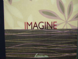 Imagine 2011 By Colemans